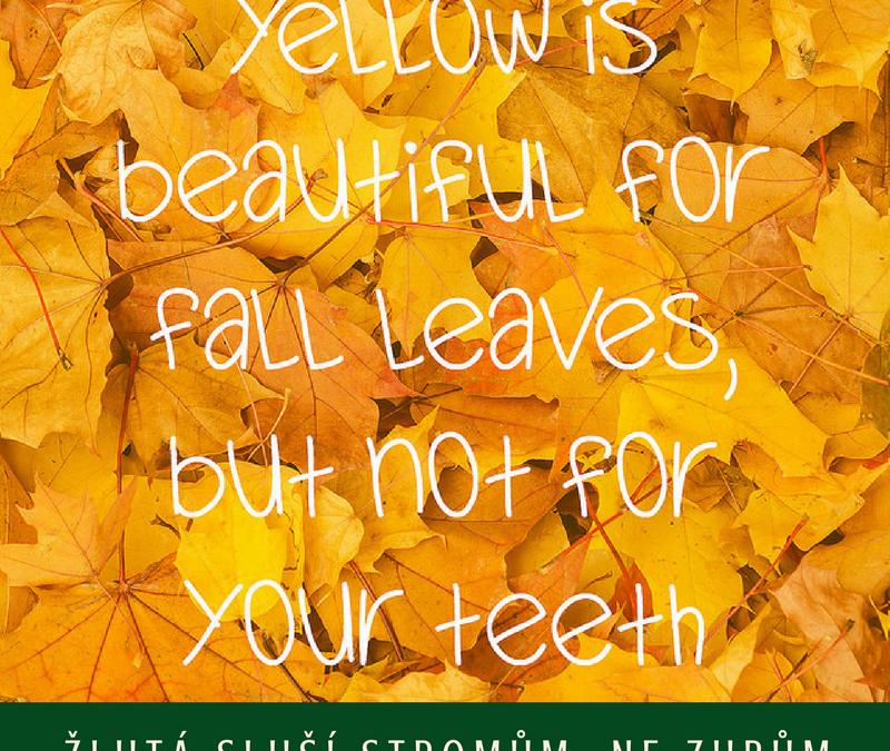 Žlutá sluší podzimním stromům, ne vašim zubům!